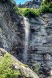 Alpien ril en mountainebos in het Nationale Park van Ordesa Stock Afbeelding