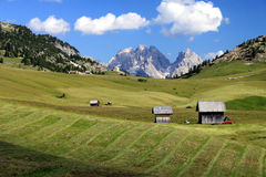 Alpien weiland 2 Stock Foto