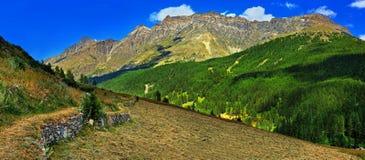 Alpienbergen met hayfield van Rhemes Notre Dame Stock Fotografie