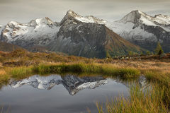 Alpiene bezinning Stock Foto's