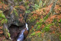 Alpiene canion in het mooie de herfstbos dichtbij Kessel-Waterval in Brandnertal-vallei, Voralberg, Oostenrijk, HDR Royalty-vrije Stock Afbeeldingen