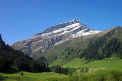 Alpiene idylle Royalty-vrije Stock Afbeelding