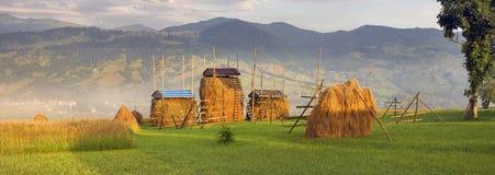 Alpiene landbouw voor eigen gebruik Stock Foto's