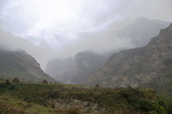 Alpiene regen royalty-vrije stock afbeeldingen