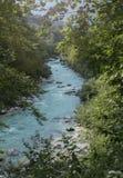 Alpiene rivier royalty-vrije stock fotografie