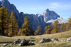 Alpiene scène Stock Afbeelding