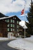 Alpiene Scène royalty-vrije stock foto's