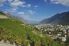 Alpiene stad en wijngaarden Royalty-vrije Stock Afbeeldingen