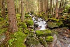 Alpiene stroom Royalty-vrije Stock Foto's