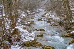 Alpiene stroom in de wintertijd stock foto