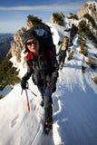 Alpiene trekker stock afbeeldingen