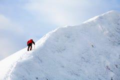 Alpiene trekker royalty-vrije stock afbeelding