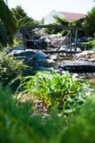 Alpiene Tuin Stock Foto