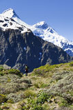 Alpiene Wandelaar Royalty-vrije Stock Afbeeldingen
