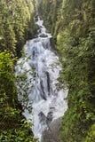 Alpiene Waterval Stock Afbeeldingen