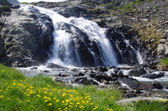 Alpiene Waterval stock foto