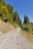 Alpiene weg in Westelijke Carinthia, Oostenrijk Stock Fotografie