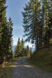 Alpiene weg in Westelijke Carinthia, Oostenrijk Stock Foto