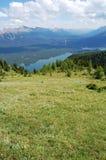 Alpiene weide Stock Foto