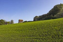 Alpiene weide met een plattelandshuisje royalty-vrije stock afbeelding