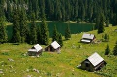 Alpiene weide met meer Stock Fotografie