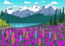 Alpiene weide met ridderspoor en rododendrons in de Alpen Stock Foto's