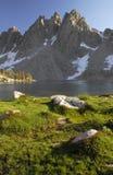 Alpiene weide in Siërra Nevada Royalty-vrije Stock Foto