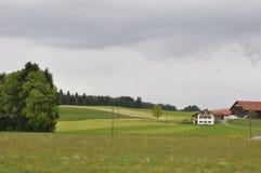 Alpiene Weiden Royalty-vrije Stock Foto