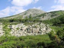 Alpiene weiden Barguzinsky Ridge Lake Baikal Stock Foto's