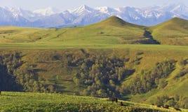 Alpiene weiden in de bergen van de Kaukasus Royalty-vrije Stock Afbeelding