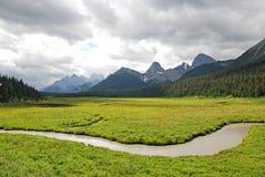 Alpiene weiden en bergen stock afbeelding