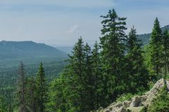 Alpiene weiden Taganay Stock Foto's