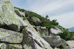 Alpiene weiden Taganay Royalty-vrije Stock Foto