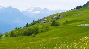 Alpiene weiden in Zwitserland Stock Afbeelding