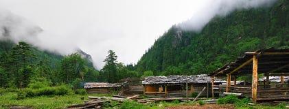Alpiene weilanden Royalty-vrije Stock Foto