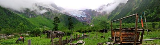 Alpiene weilanden Stock Afbeelding