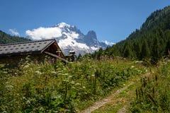 alpin äng Arkivfoto