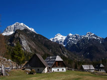 Alpin äng & berg arkivfoto