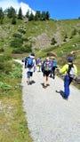 Alpin ängvandring på den jämna grusbanan Arkivfoto