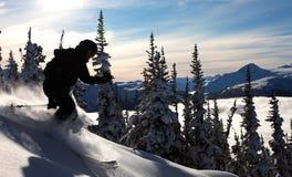 Alpin Lizenzfreies Stockbild