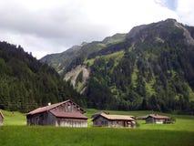 alpin Royaltyfri Bild