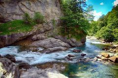 Alpin bäck och mountaineskog i nationalparken av Ordesa royaltyfri bild