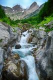 Alpin bäck och mountaineskog i nationalparken av Ordesa Arkivbild