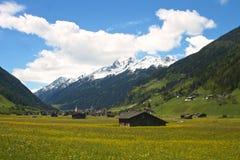 Alpin daläng och snöig maximum Arkivbild