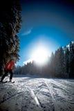 Alpin del pattino Fotografie Stock Libere da Diritti