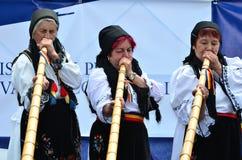 alpin festivalhorn Arkivfoton