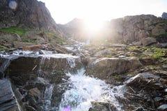 alpin fjäder Royaltyfri Foto