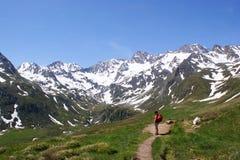 alpin fotvandrarepanorama Arkivbilder