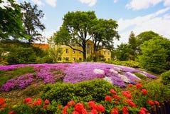 Alpin glidbana i blommor, botanisk trädgård av det botaniska institutet V L Komarov rysk akademi av vetenskaper St Petersburg arkivbild
