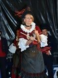 Alpin Hornfestival Royaltyfri Foto